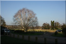 TQ5365 : Roundabout outside Lullingstone Roman Villa at the entrance to Lullingstone Country Park by N Chadwick
