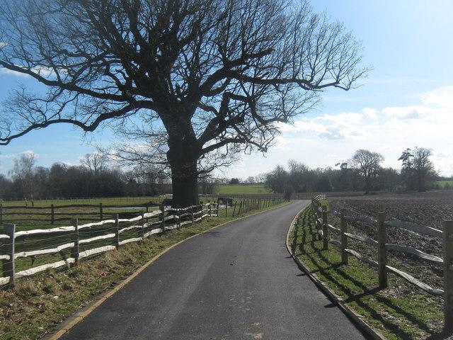 Access road from Ashurst Manor © David Anstiss cc-by-sa/2 0