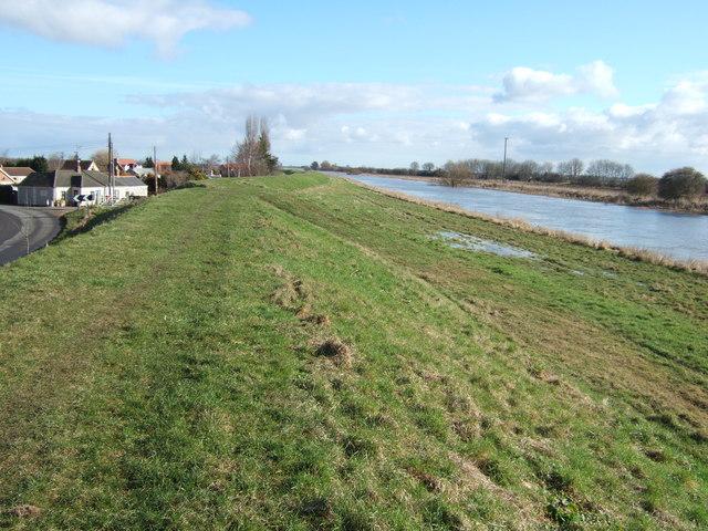 The river bank at Guyhirn