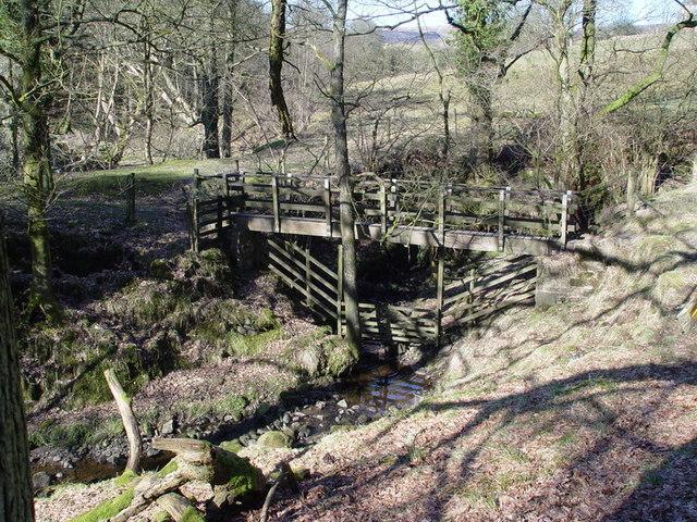 Footbridge Over Dobsons Brook