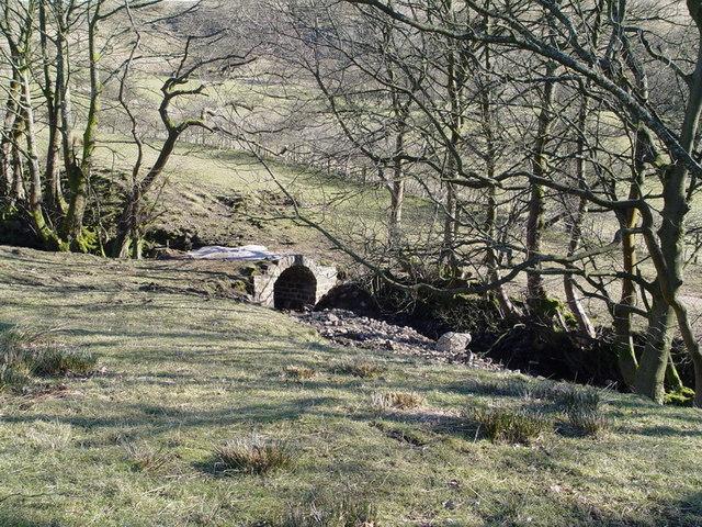 Small Bridge At Dinkling Green