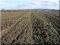 SP8318 : Bridleway cutting across the field by Shaun Ferguson