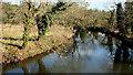J3067 : The River Lagan from the Drum Bridge (1) by Albert Bridge