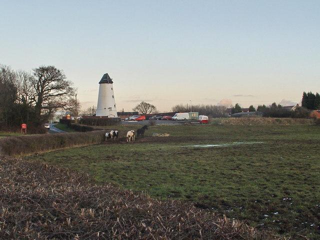 Windmill At Clifton