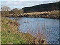 NZ2436 : River Wear near East Park by Philip Barker