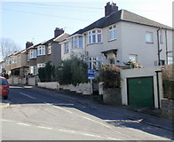 ST3288 : Brynderwen Grove, Newport by Jaggery