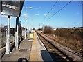 NZ3556 : The line back towards Sunderland by Christine Johnstone