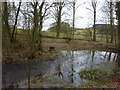 SK3154 : Small pond on Mere Brook by Peter Barr