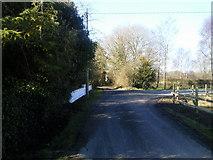 O0648 : Fleenstown Road, Co Meath by C O'Flanagan