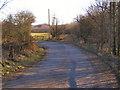SD8207 : Griffe Lane by David Dixon