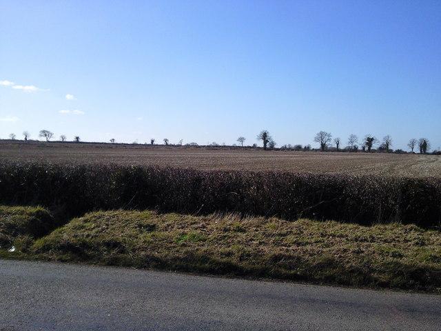 Field, Peacockstown, Co Meath