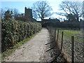TQ8927 : Footpath to Wittersham by David Anstiss