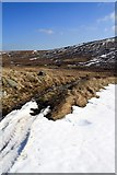 NY5009 : Track near Mosedale Cottage by Colin Kinnear