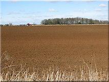 ST7980 : Freshly turned field by Warren Barn by Sarah Charlesworth