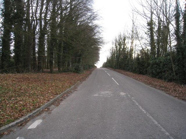 Rooksdown Lane