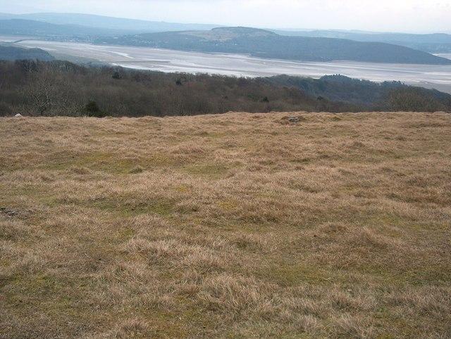 The summit plateau of Hampsfell