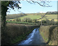 ST6961 : 2010 : Mill Lane north of Priston by Maurice Pullin