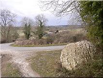 SU8414 : Chalk ball by footpath near Stapleash Farm by Shazz
