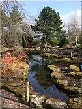 SJ7243 : Bridgemere Garden World by Richard Hoare