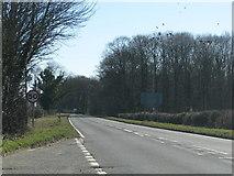 SP4121 : The A44 near Glympton by Sarah Charlesworth