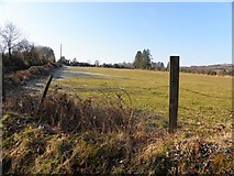 H1194 : Cappry Townland by Kenneth  Allen
