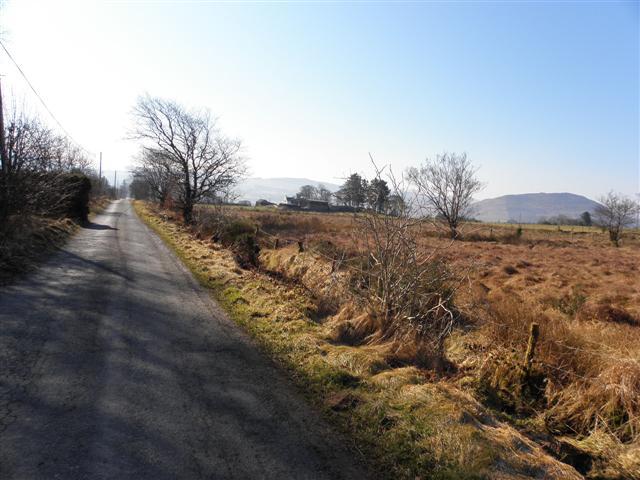 Road at Kinnaderry