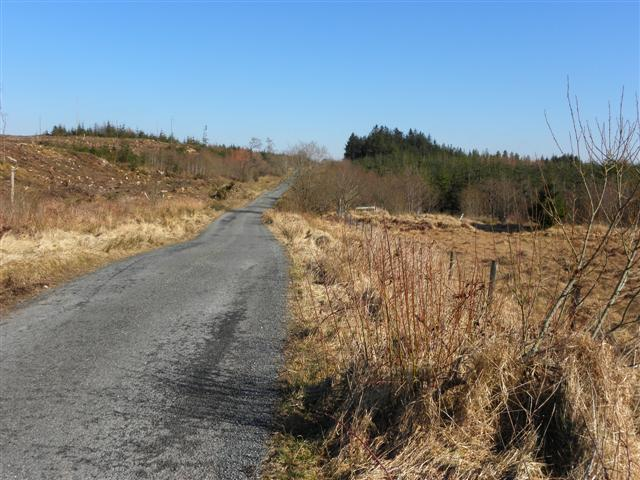 Road near Gorey Hill
