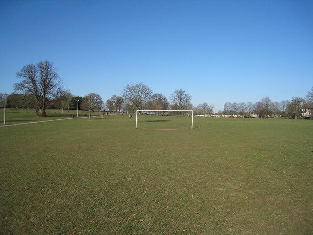 Open goal - Prospect Park