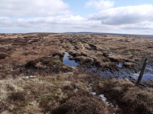 Path across Middle Moor
