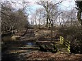 NZ0787 : Ford and footbridge south of Longwitton Dene by Andrew Curtis
