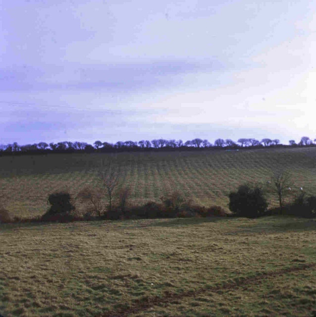 Old furrows at Crinstown, Co. Meath