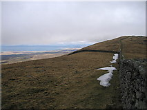 SH6320 : Boundary wall on Diffwys ridge by Rudi Winter