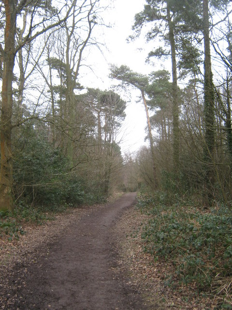 The Greensand Way in Limpsfield Chart