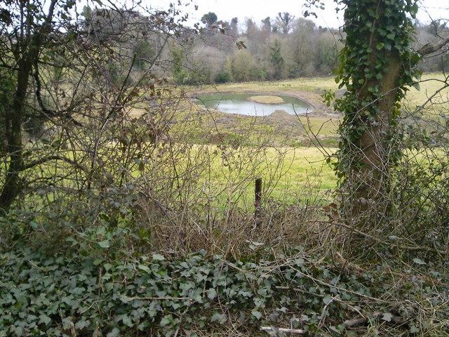 Artificial Pond, Co Meath