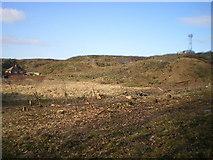 SJ6807 : Deforestation and devastation on Paddock Mound, Dawley by Richard Law