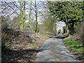 SO8280 : Solcum Lane near Blakeshall, Worcestershire by Roger  Kidd