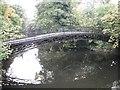 NS8594 : Bridge, Cambus by Richard Webb