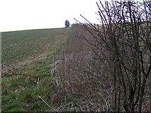 ST9117 : Footpath, Ashmore by Maigheach-gheal