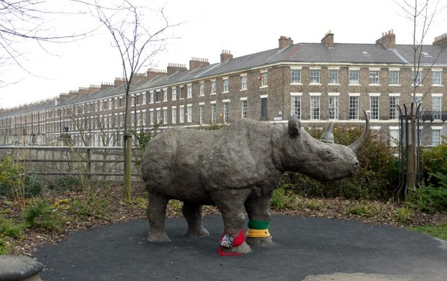 'Black Rhinoceros', Hancock Museum