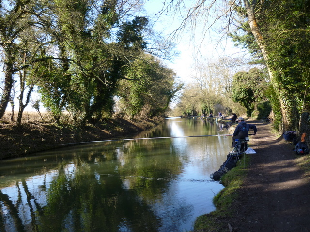 Shaded stretch of the Kennet & Avon canal