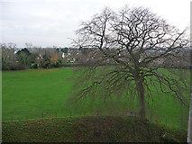 TM2863 : Castle meadow, Framlingham by Chris Gunns