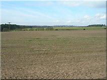 SK5853 : Farmland off  Rigg Lane by JThomas