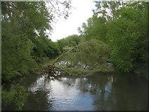 SU6269 : Blocked waterway by Sandy B
