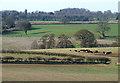SO7891 : Farmland near Farmcote, Shropshire by Roger  Kidd