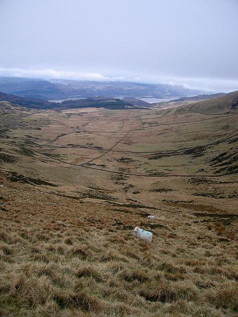 Wide cwm below the Diffwys ridge