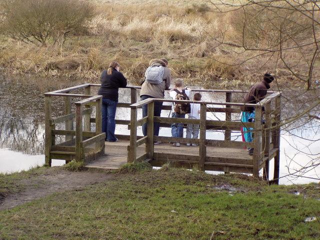 Pond viewing platform at Den of Maidencraig