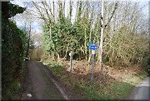TQ7035 : Footpath into Kilndown Wood by N Chadwick