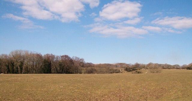 Farmland at Betws Fawr