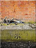 J3472 : Bench Mark, Belfast by Rossographer