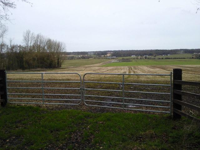 Farm Landscape, Co Meath